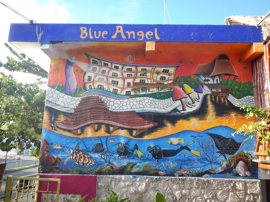 Blue Angel Dive Shop: dive shop