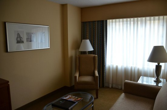 Embassy Suites by Hilton Boston - at Logan Airport : リビングルーム