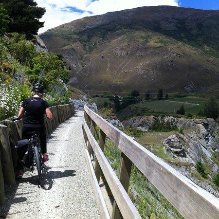 Queenstown Bike Tours: Near Kawarau Bridge