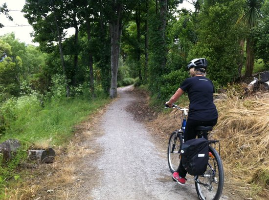 Queenstown Bike Tours: Lake Hayes trail