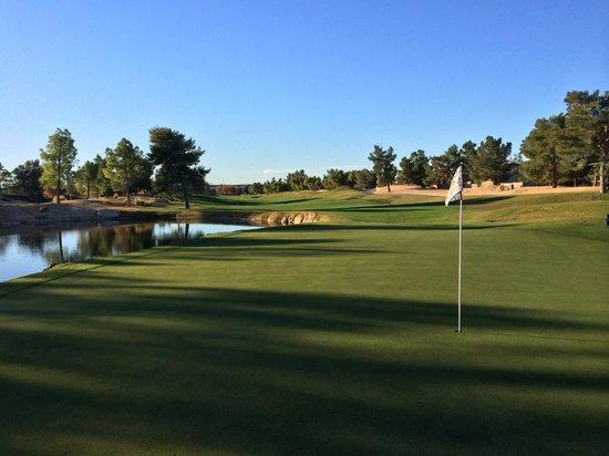 Desert Pines Golf Club : desert pines - #7 green