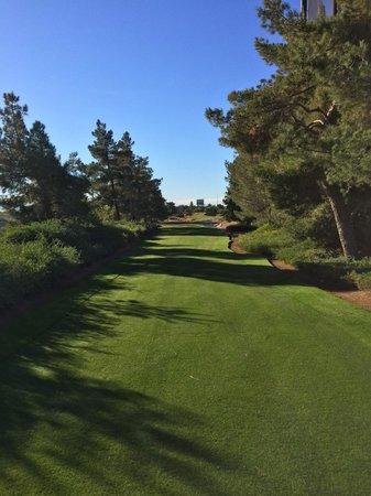 Desert Pines Golf Club : desert pines - #12 tee shot - very tight!