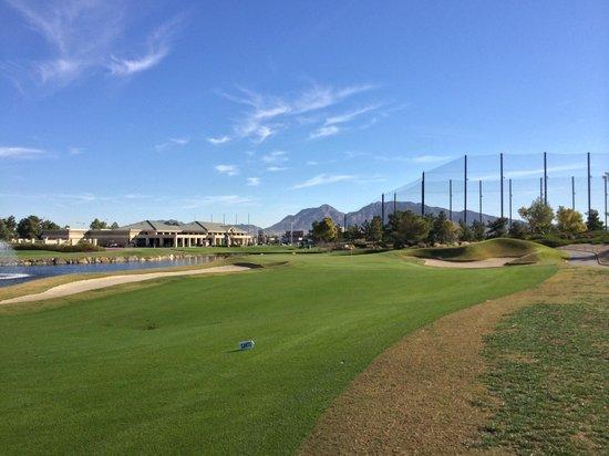 Desert Pines Golf Club: desert pines - #18 fairway