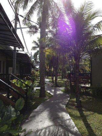 Casa Fina Fine Homes: Nice surrounding