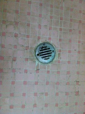 New Yorker Boutique Hotel: Stains/mould around the shower drain