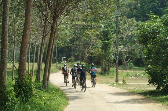 Amazing Bike Tours : koh yao noi, cycling