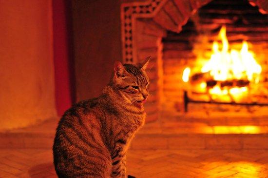 Riad Boussa : 暖炉