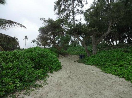 Kalama Beach Park: go to beach