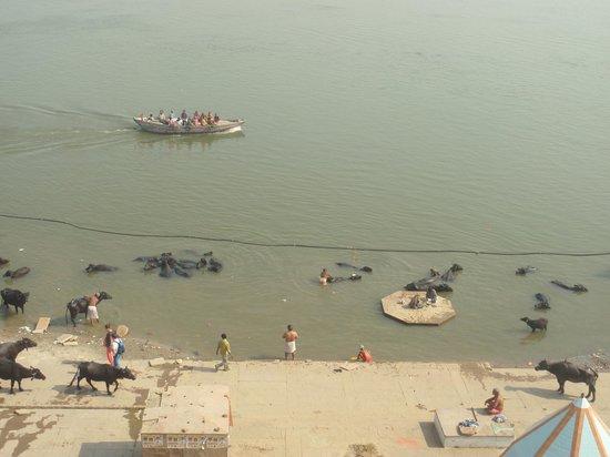 Suryauday Haveli - An Amritara Resort: View from room window