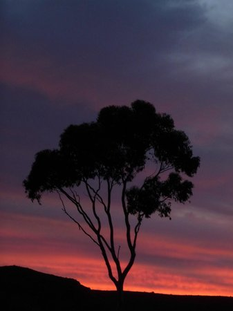 Wolverfontein Karoo Cottages: Sunset from the farm