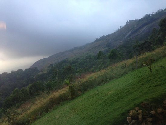 The Wind Munnar : view from the room