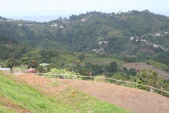 Toro Verde Nature Adventure Park : La Bestia starting point on the lower left