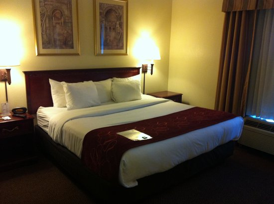 Comfort Suites Newark: clean room, with Jacuzzi