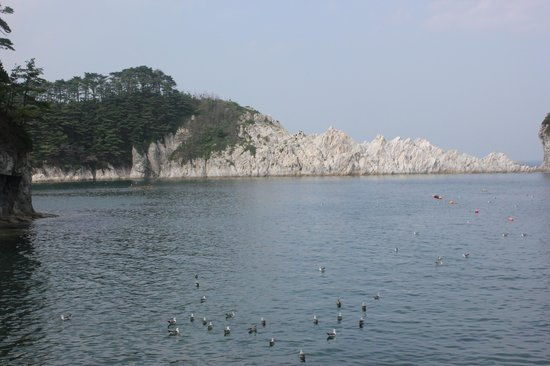 Jodogahama  Beach : 独特の白い岩