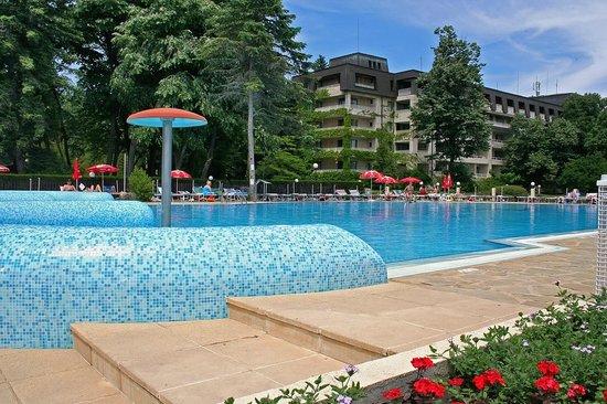 Lotos Hotel: pool area Lotos