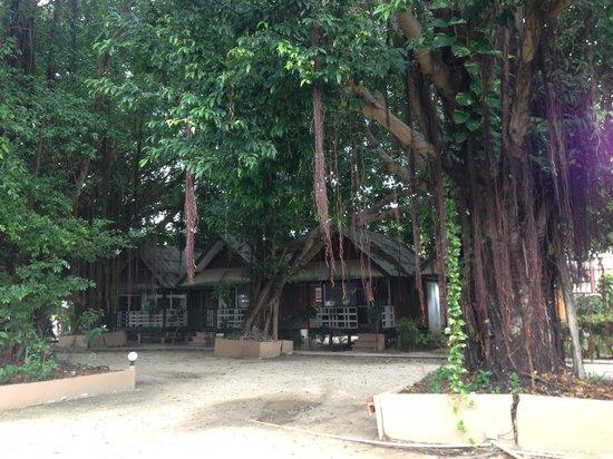 Weekender VIlla Beach Resort : Entrance