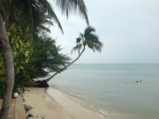 Weekender VIlla Beach Resort : The view