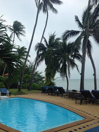 Weekender VIlla Beach Resort : Pool