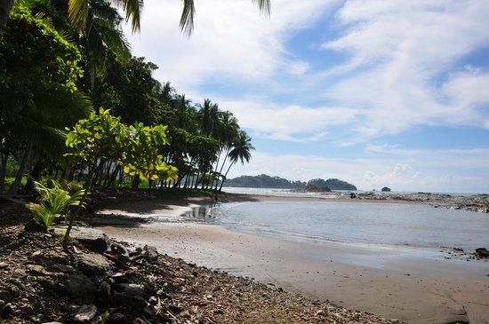 Costa Paraiso: Der Strand Dominicalito