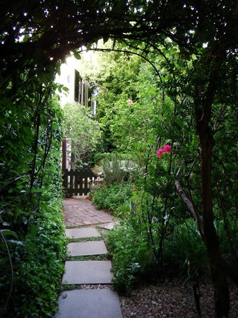 Akademie Street Boutique Hotel and Guest House: Gardens