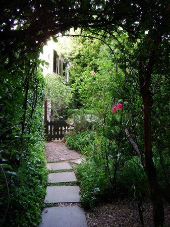 Akademie Street Boutique Hotel : Gardens