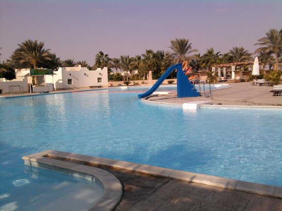 Coral Beach Hurghada Resort : бассейн