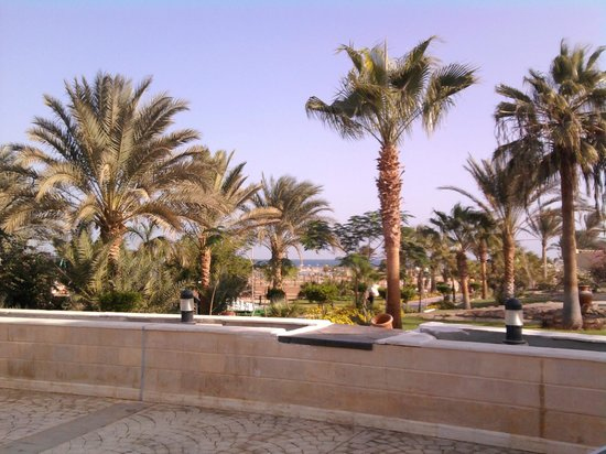 Coral Beach Hurghada Resort : територия