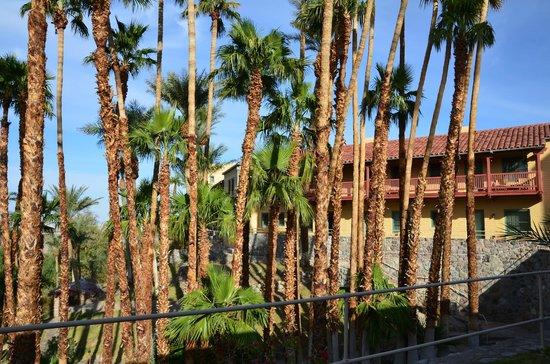 Furnace Creek Inn and Ranch Resort: Jardin Inn