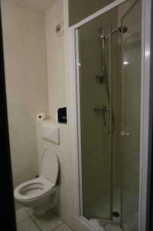 Le Strasbourg : Bathroom with shower and toilet