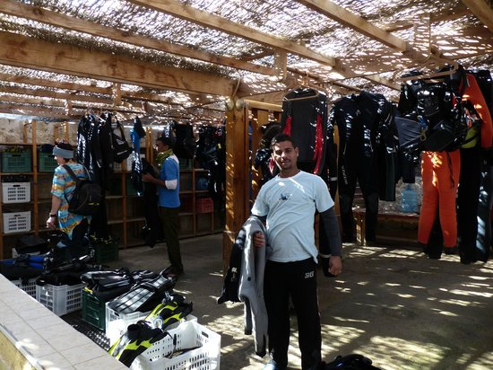 The Oasis : the dive store
