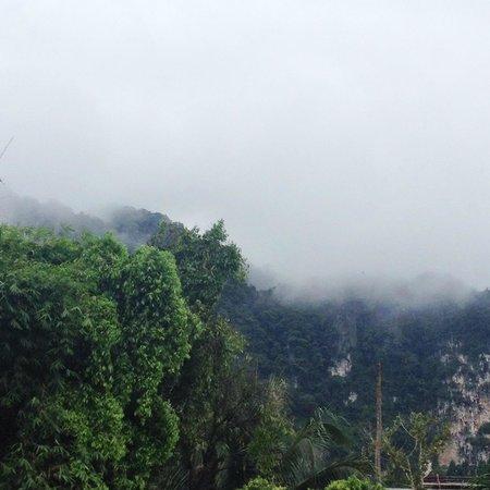 The Verandah : Вид из окна, после дождя особенно прекрасно