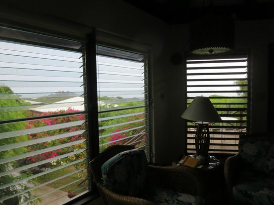 Guavaberry Spring Bay Vacation Homes : Looking out from our house