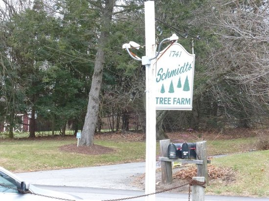 Schmidt's Tree Farm
