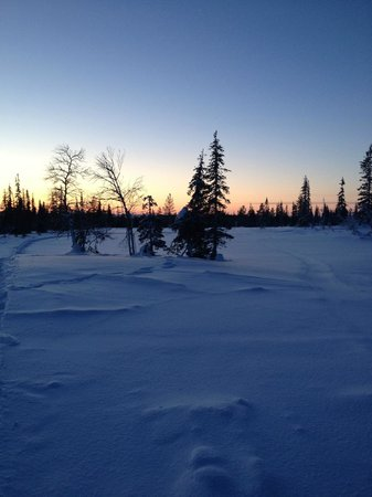 Lapland Hotel Pallas : Views from Hotel Pallas