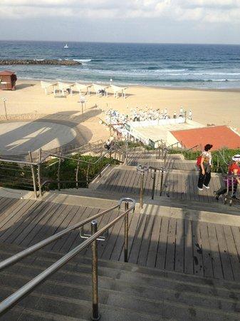 Daniel Herzliya Hotel : Пляж