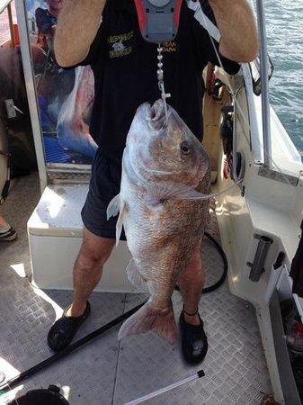 Captain Bucko Fishing Charters: 20lb er