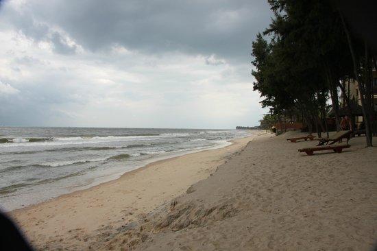 Sunny Beach Resort: пляж