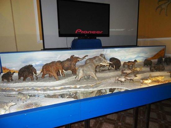 Our Ice Age Museum: Ледниковый Период