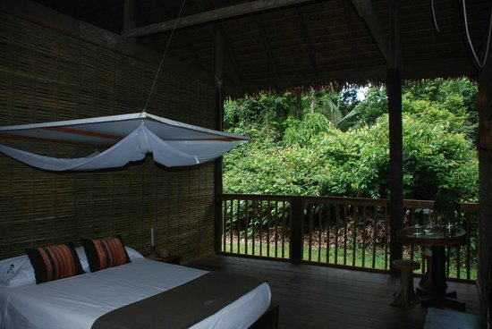 Posada Amazonas: View of nature from the room