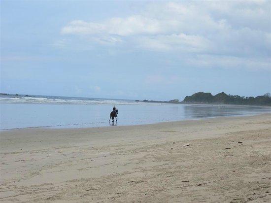Harmony Hotel Nosara: Beach closet to Harmony Hotel - Playa Guinoes