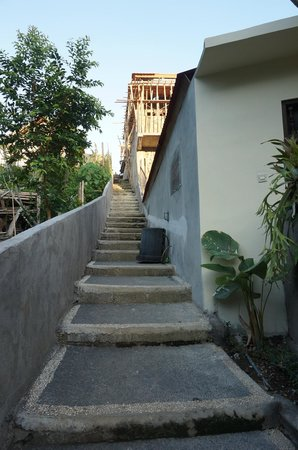 Citrus Tree Villas - Widia: The staircase leading down to Widia's Homestay.