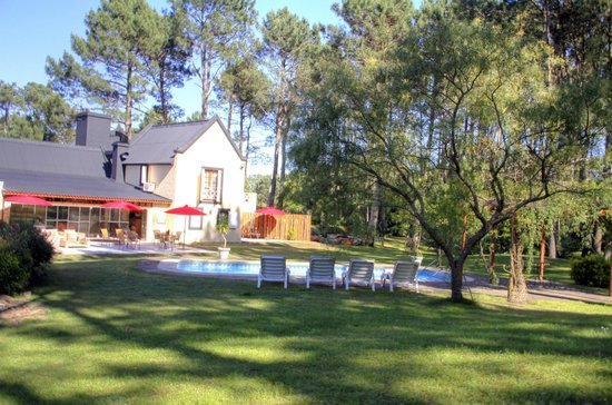 Neike Boutique Hotel: Pool and general View