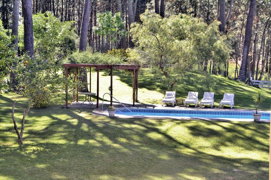 Neike Boutique Hotel: Garden and  Pool view
