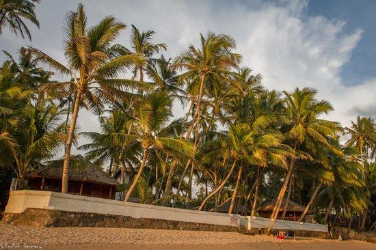 Rockside Cabanas Hotel: Blick nach oben