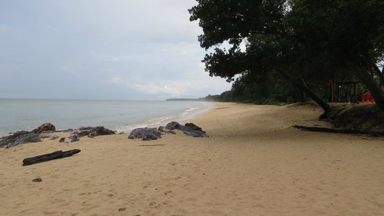 Kota Tinggi, Malaysia: Beach as far as your eye can see.