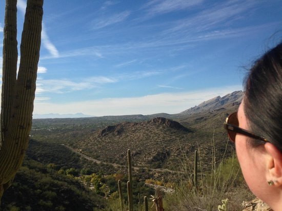 Sabino Canyon: My Bella...