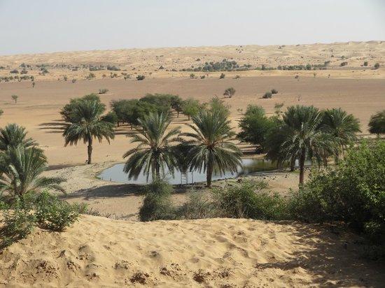 Al Maha, A Luxury Collection Desert Resort & Spa: Aussicht