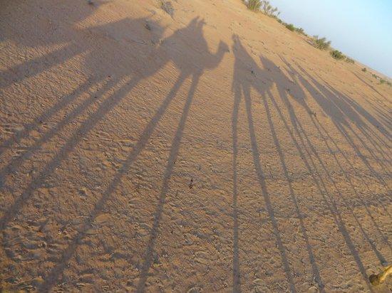 Al Maha, A Luxury Collection Desert Resort & Spa: Ausflug mit Kamelen