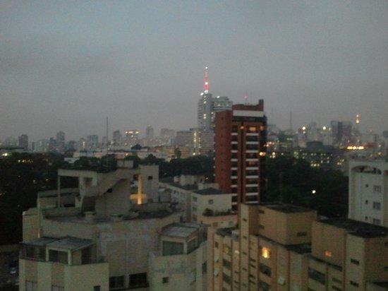 Mercure São Paulo Pinheiros Hotel: Vista 1