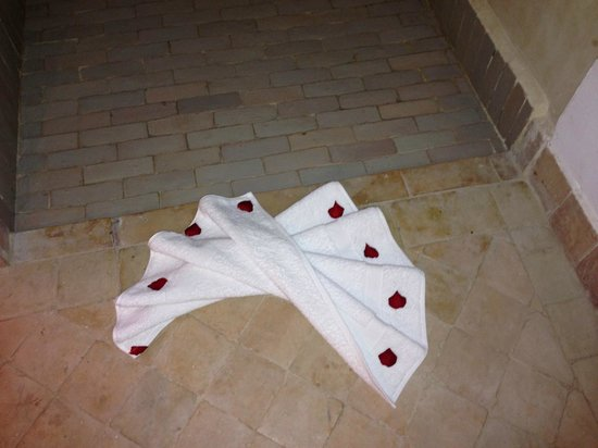 Riad Badi: Some of the many rose petals